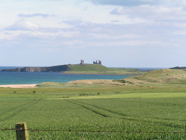 Wheat field with Dunstanburgh Castle in background