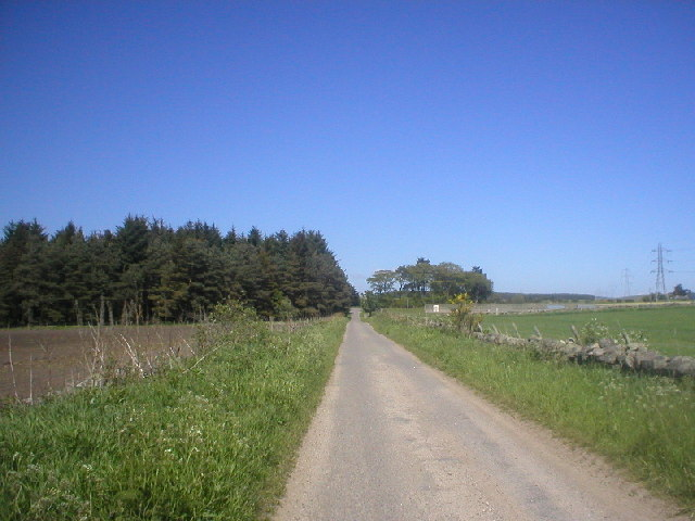 Country Lane near Drum