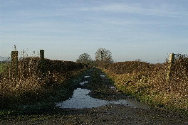 Track near Nye