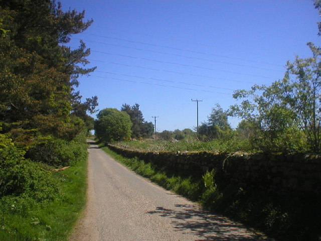 Country Lane near Coalford