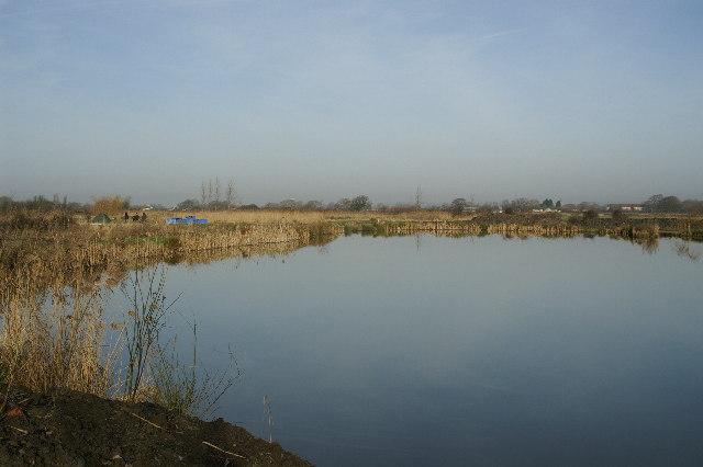 Silver Springs Fishing Ponds near Congresbury