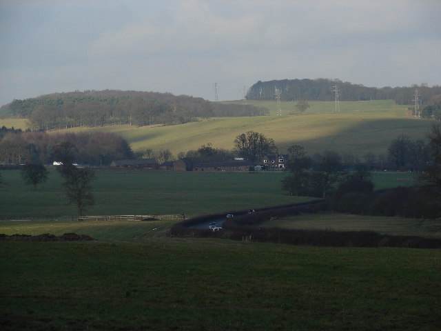 Green Fields near The Lymes