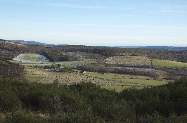 Looking towards Balnacraig, near Dinnet, Aberdeenshire
