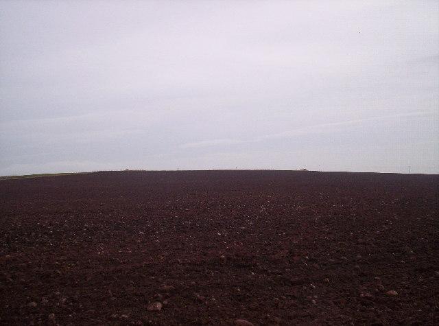 Fields on Knox Hill