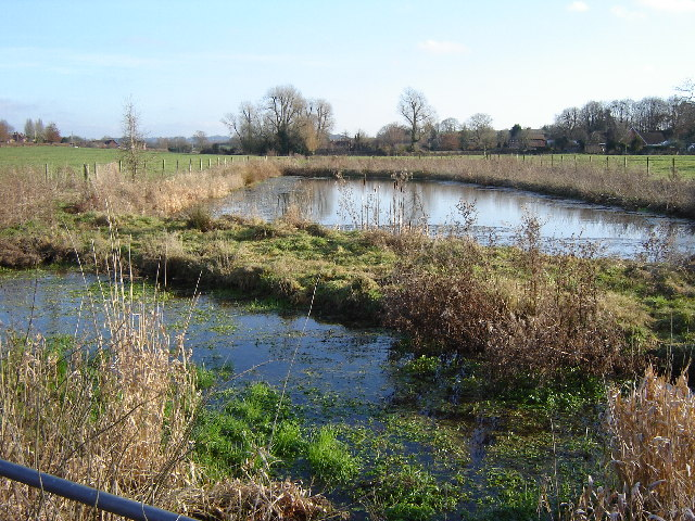 Disused Cress Beds near Bishops Sutton