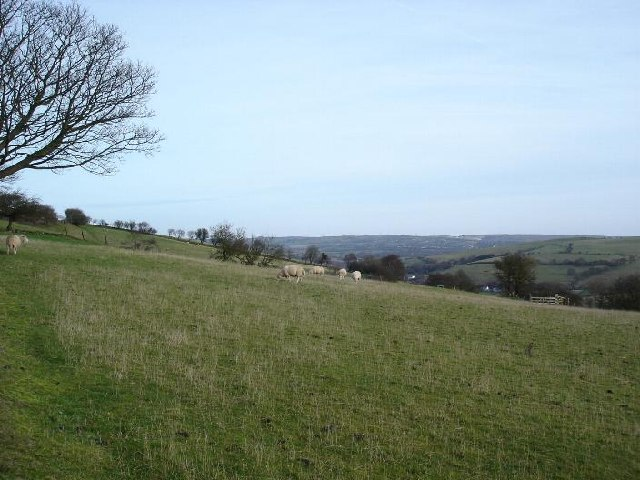 Nant Coed farmland