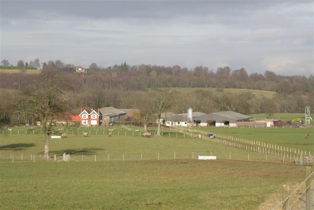Witley Farm
