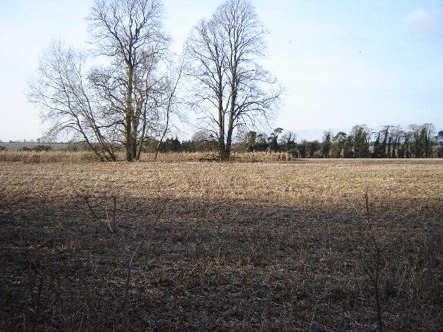 Open countryside near Bighton