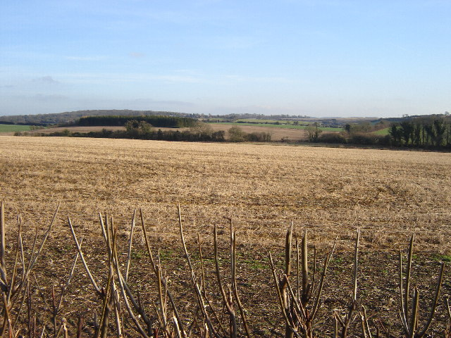 Open Farmland near Bighton