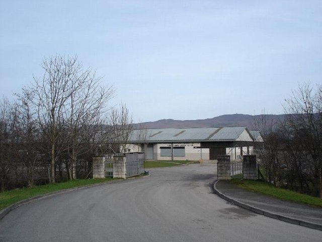 Ruthin auction mart