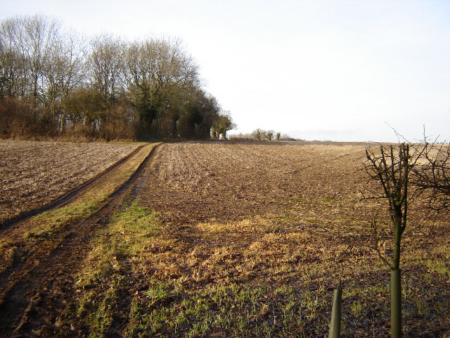 Footpath leading to Thorngrove Copse