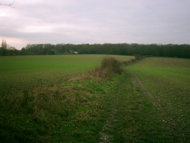 Footpath to Colemans Green