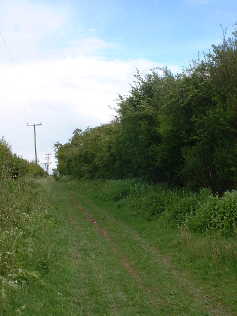 Icknield Way near Royston