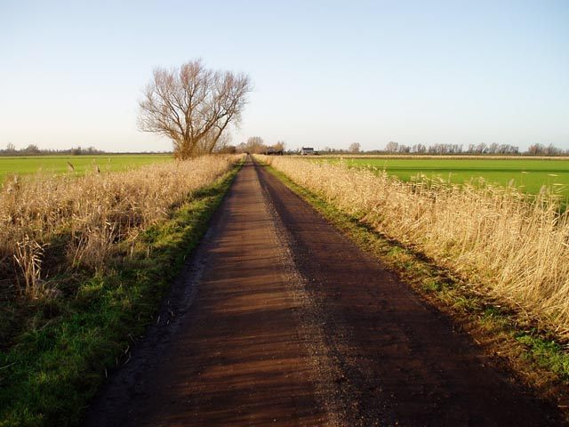 Track leading to Lode Farm