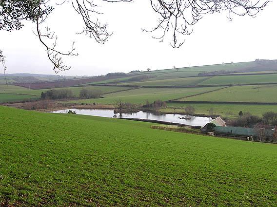 Lake below Rowden Farm