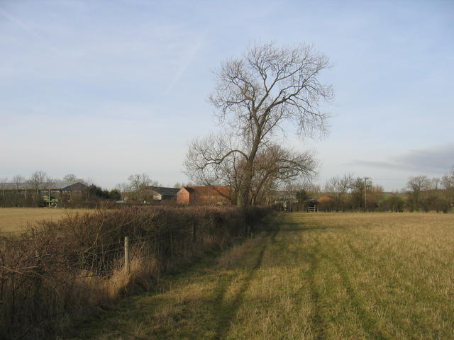 Ireland Farm