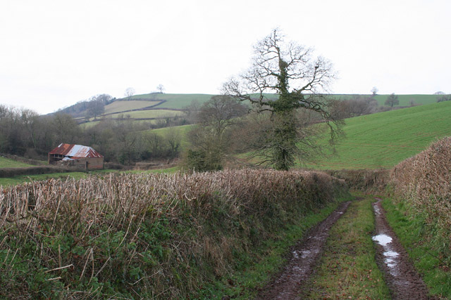 Cadeleigh: track to Farleigh