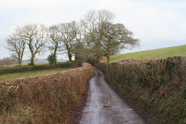 Cadeleigh: lane between Welltown and Worthy Bridge