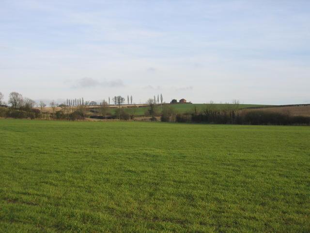 Burton Hill