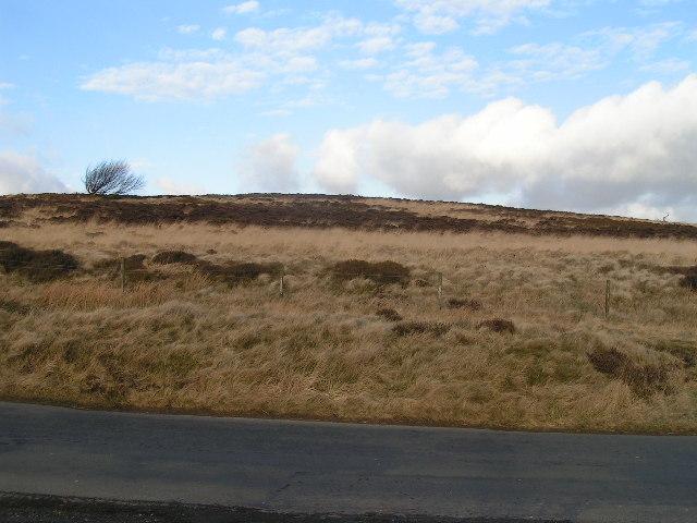 Hoo Moor summit