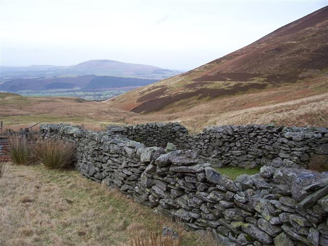 Sheepfolds at the head of Barkbethdale beck.