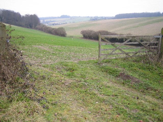Chesham: Dry valley near Lower Hundridge Farm