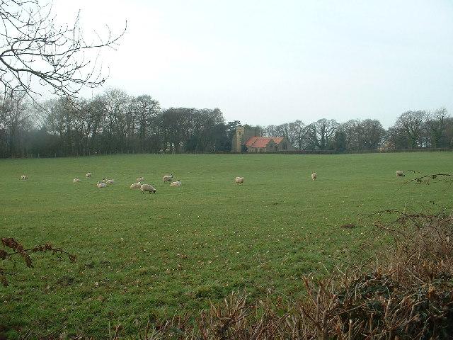 Farmland near All Saints Church