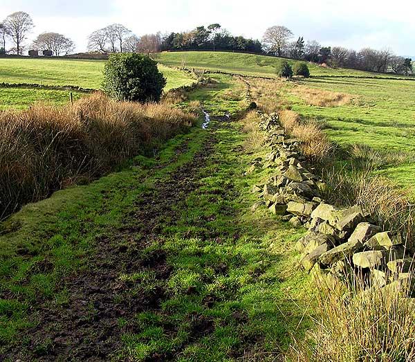 Green Lane towards Egg Well