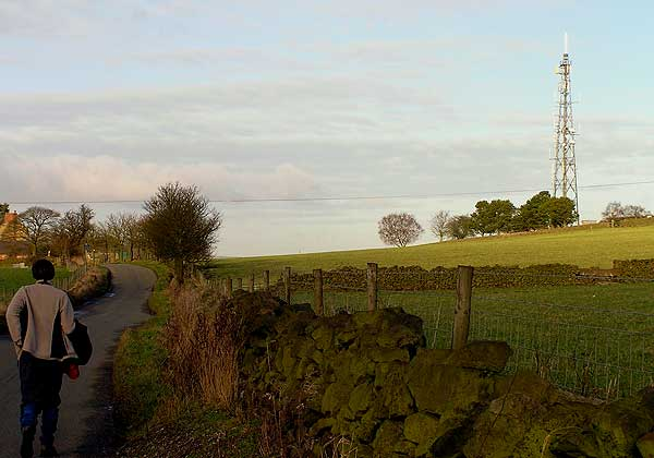 Telecommunications mast  near Mount Road