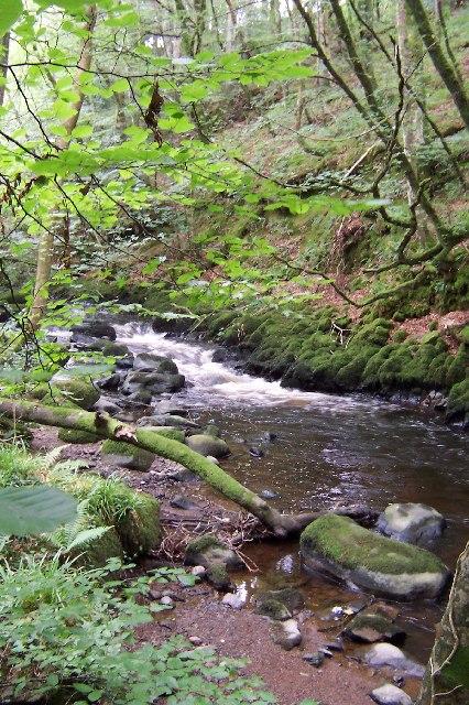 River Dwyfach, Talhenbont Hall, Lleyn Peninsula