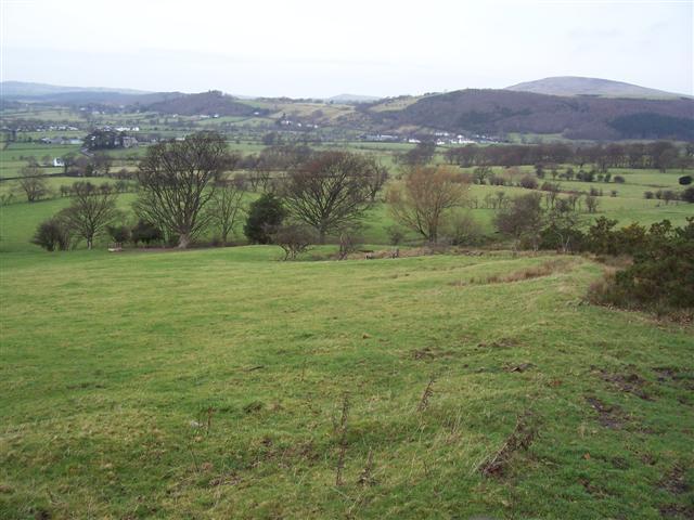 A view of Bassenthwaite Binsey Fell behind.