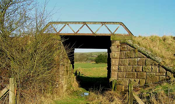 Accommodation bridge