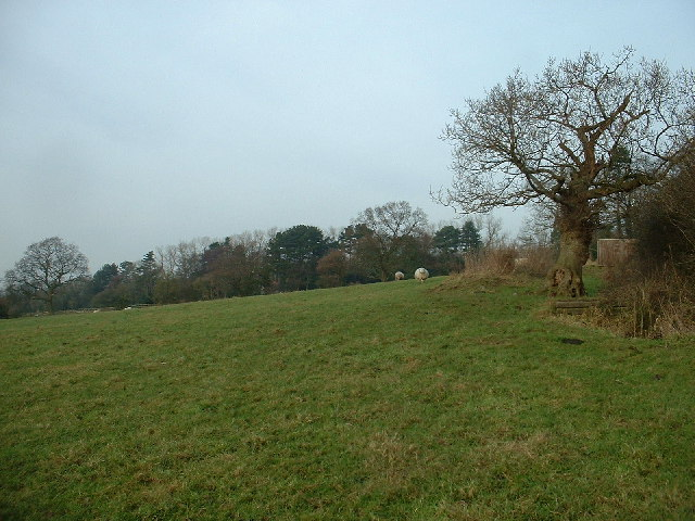 Farmland at Sullomside