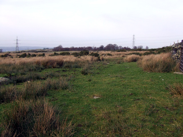 Fields below Bryn Hall Quarry