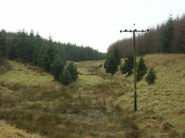 Course of Carrot Burn, Whitelee Forest