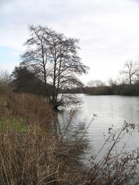 The Thames near Abingdon