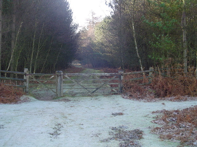 Gateway into Denny Lodge Inclosure