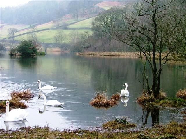 Eastern End of Rydal Water