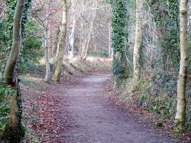 Lon Ogwen Cycle track
