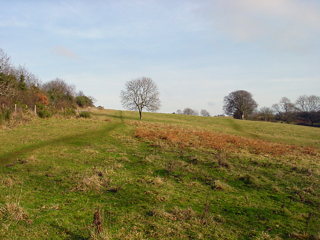 Climb up to Cadbury Camp