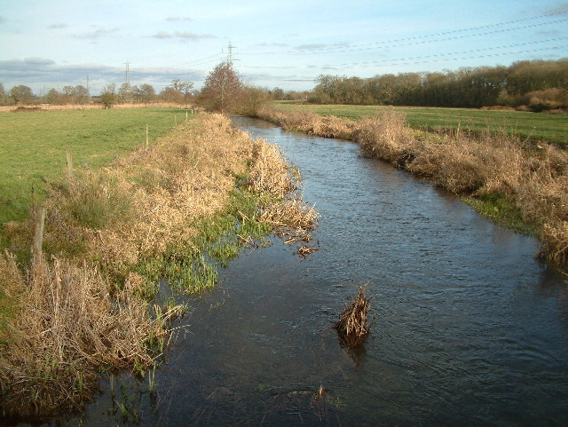 River Allen, Dorset