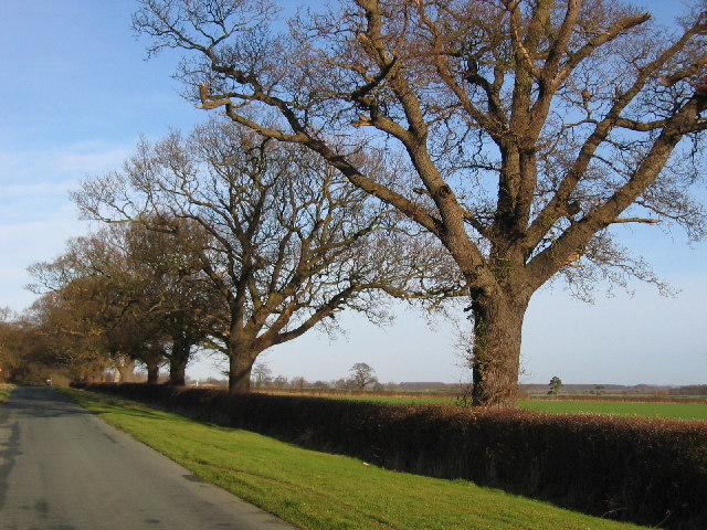 Near Moorfield Farm