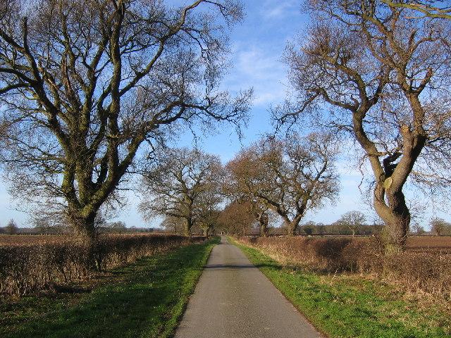 Road to South Dalton