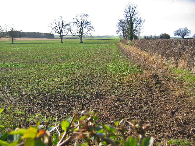 West of Bainton
