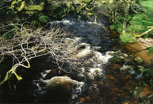 Sampford Spiney: River Walkham