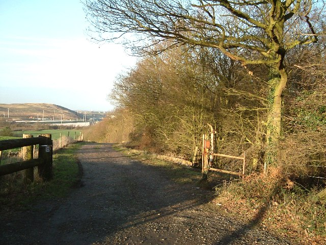 Track by the side of Biddle's Wood