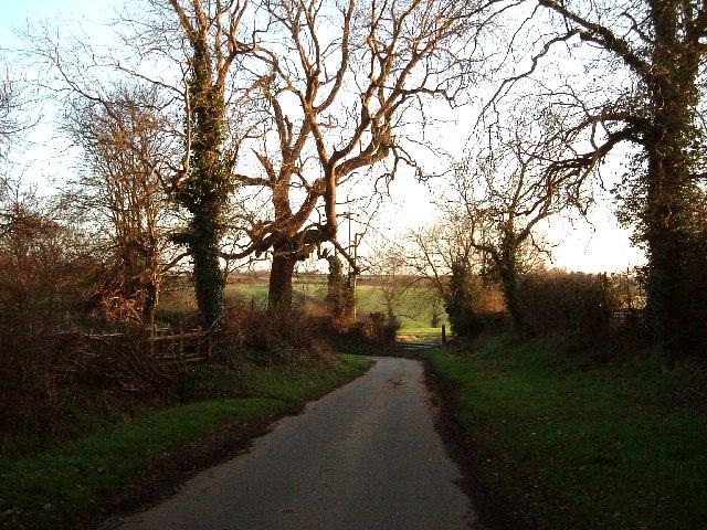 Heanley Lane, Hurley Common