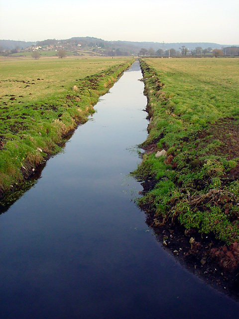 Tickenham Boundary Rhyne looking NE