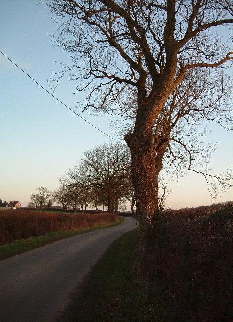 Foul End Lane