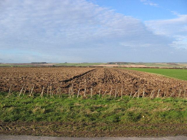 Farmland at SE91295707